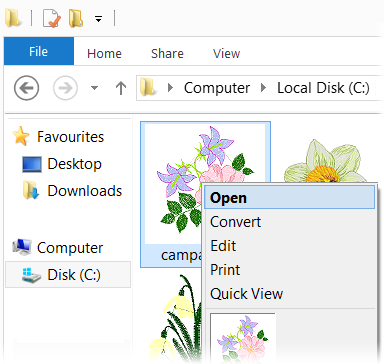 Embird Iconizer running on background of Windows Explorer